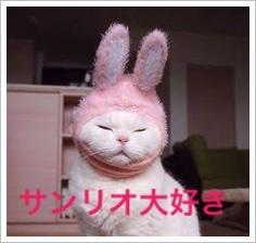 サンリオ男子の登場人物の人気ランキング!アニメ放送日はいつ?4