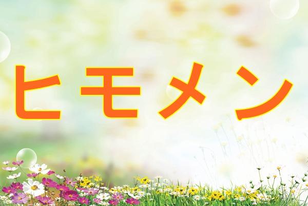 ヒモメン3