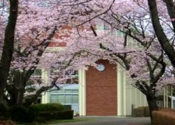 愛国学園龍ヶ崎高校1